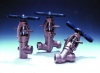 Clampseal in-line serviceable globe valves ideal for severe service apps