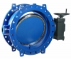 Butterfly valve for long-distance water transport